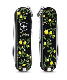 Swiss army knife - Classic Limited Edition 2019 - 0.6223.L1905